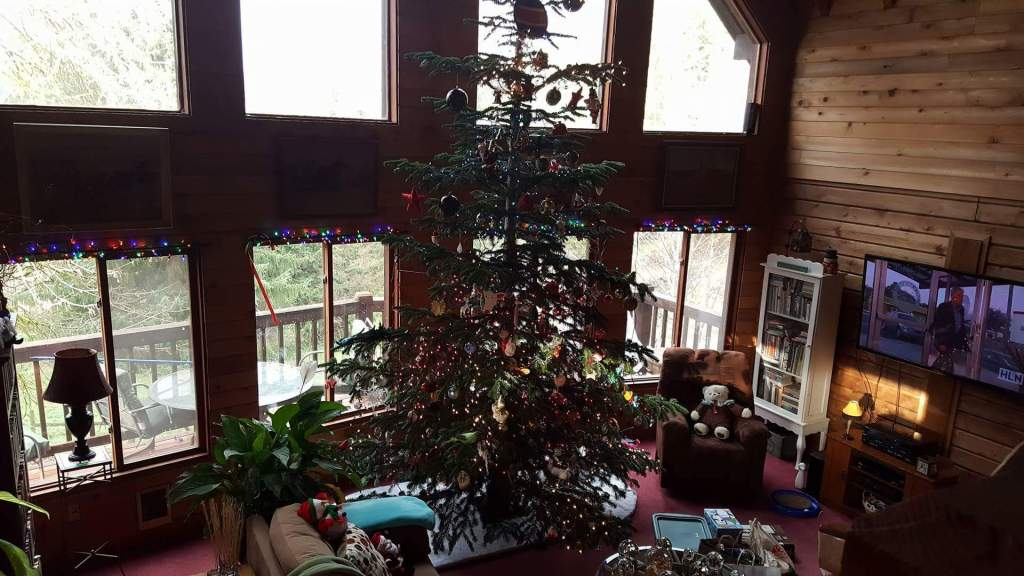 The second tree. Doug decorated this one. It doesn't look it, but it's substantially shorter than his standard thirty-foot affair.